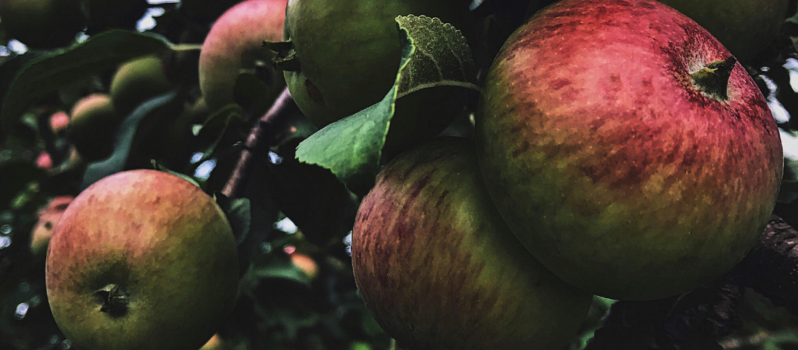 Apple Magick Banishing Spell for Mabon #autumnalequinox