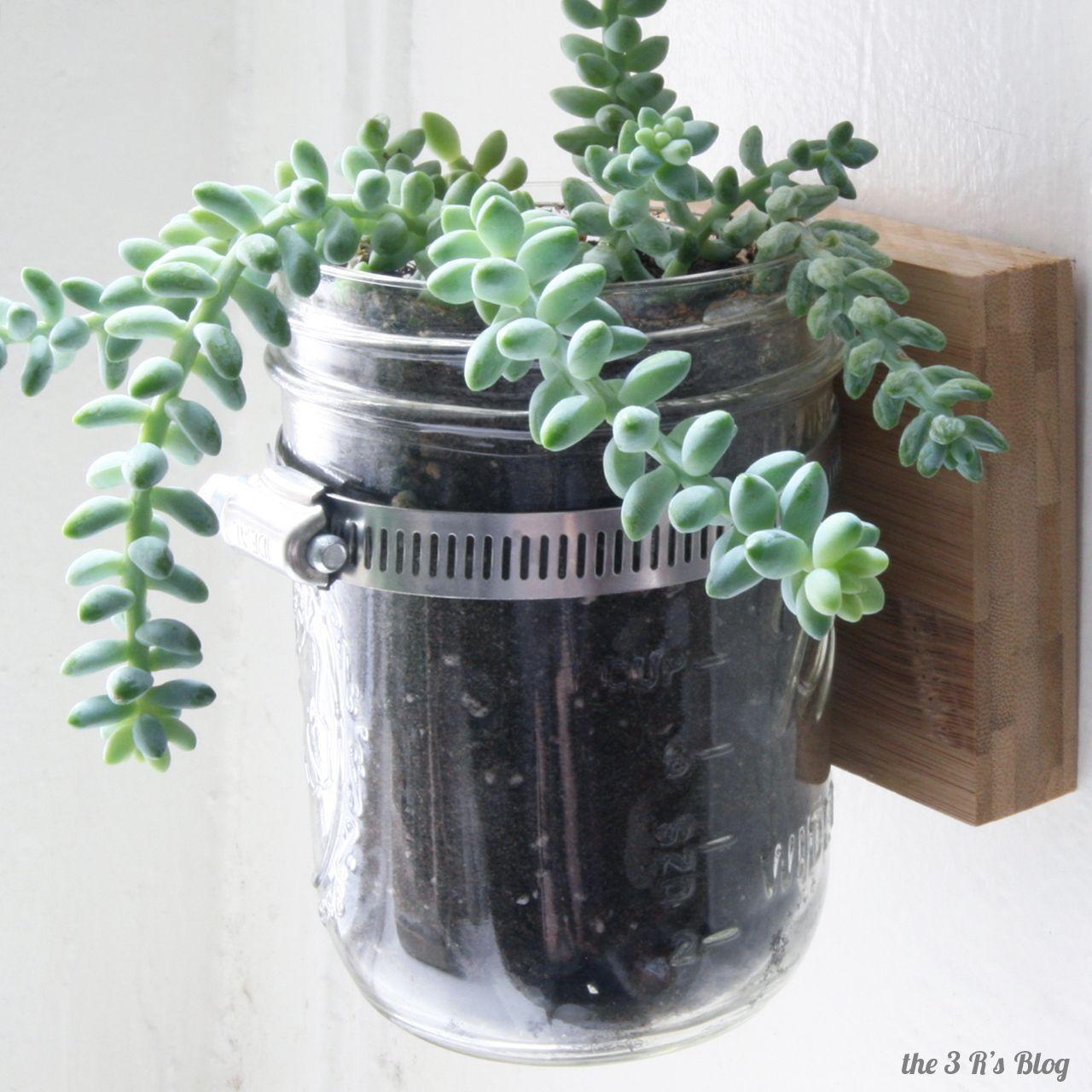 Hanging Mason Jar Planter Hanging Mason Jar