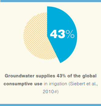 Groundwater supplies 43% of the global consumptive use in irrigation.