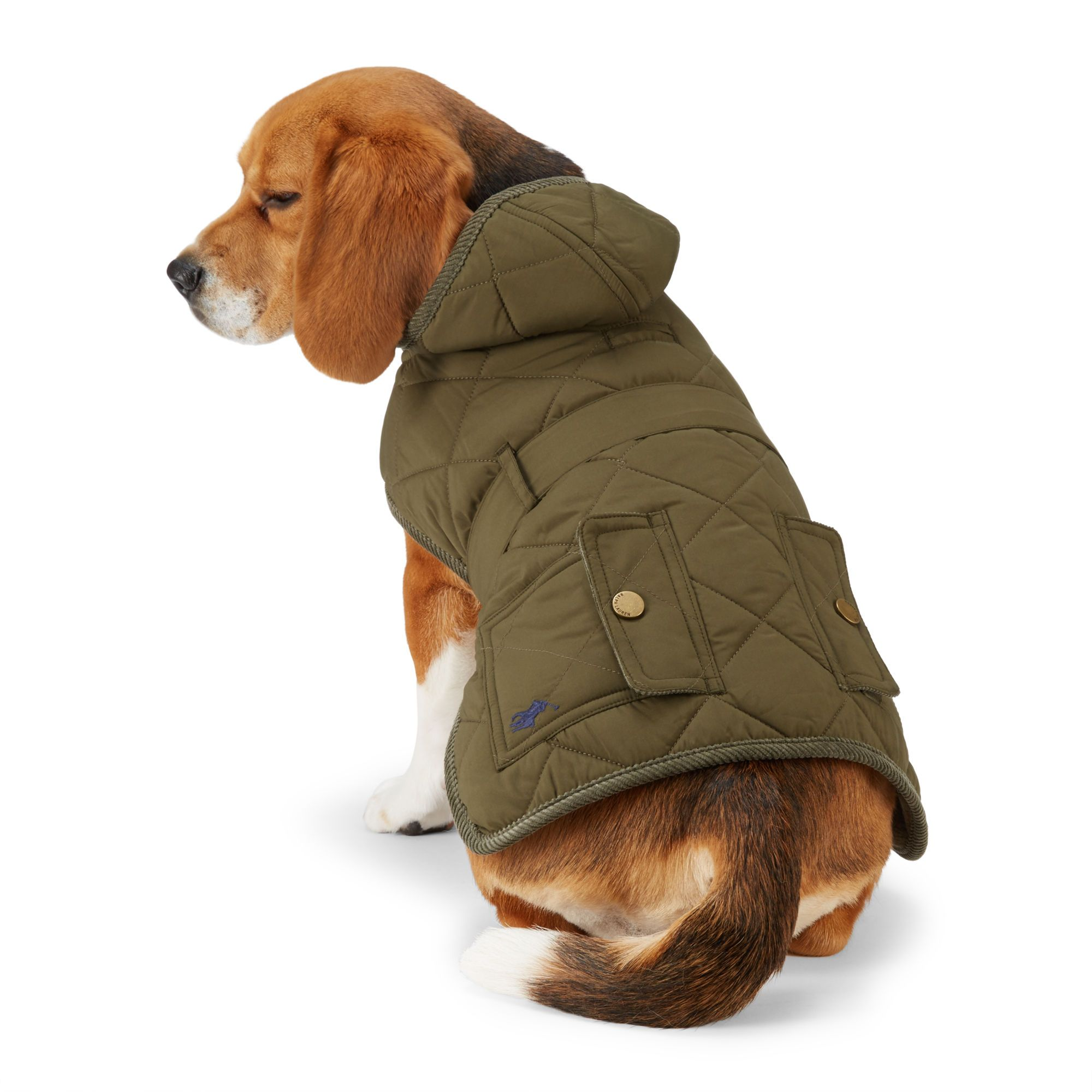 Quilted Hooded Dog Coat For The Pet Home Ralphlauren Com Dog