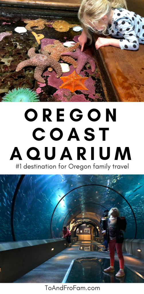 Going to the Oregon Coast on a family vacation? The Oregon Coast Aquarium with kids is one of the most family-friendly activities on the coast. Here, everything you need to know to visit this Newport aquarium! To & Fro Fam