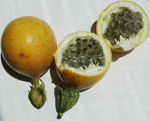 Pin En Frutas Exóticas
