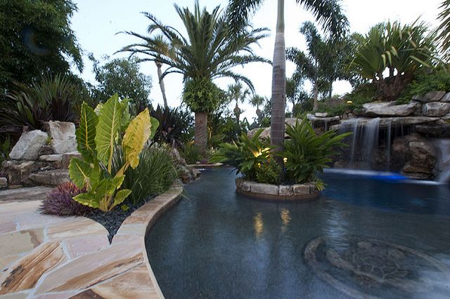 Florida Natural Landscape Landscaping Swimming Pool