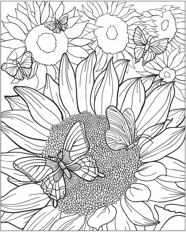 sunflower coloring pages for adults 60 Desenhos para Adultos | COLORING PAGES BOOKS FOR ADULTS  sunflower coloring pages for adults