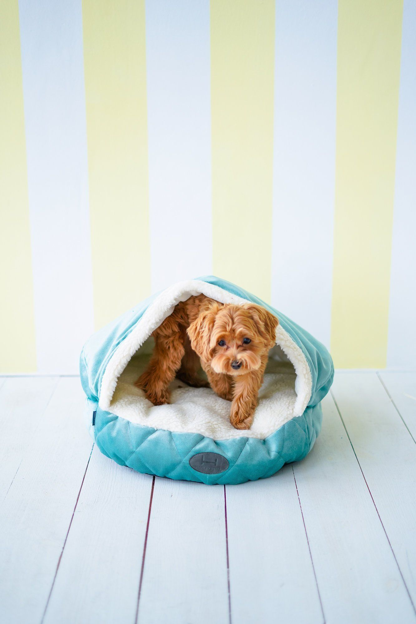Dog cave bed Turquoise, white faux fur hood for warm