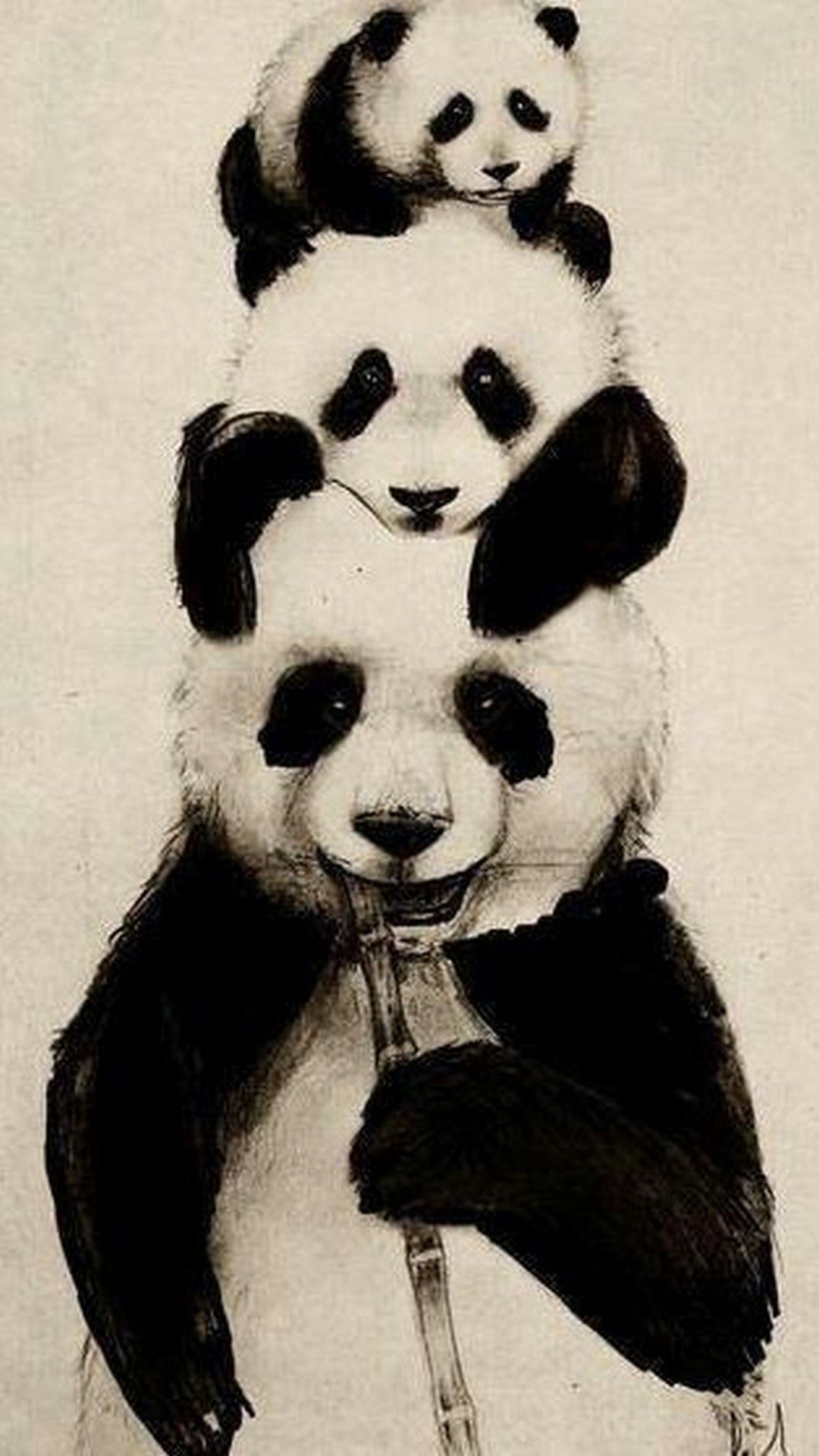 Cute Panda Wallpaper Android Cute panda wallpaper, Panda