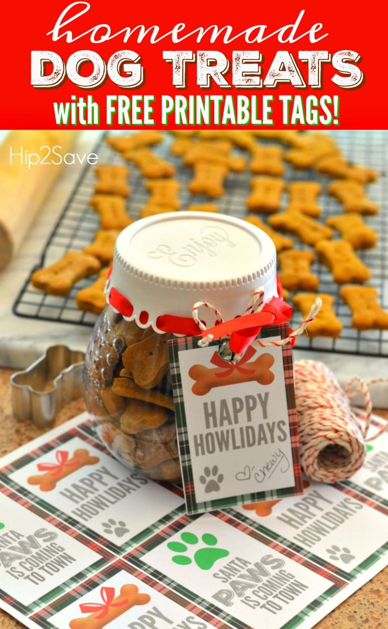 Homemade Dog Treats Recipe With Free Printable Happy Howlidays