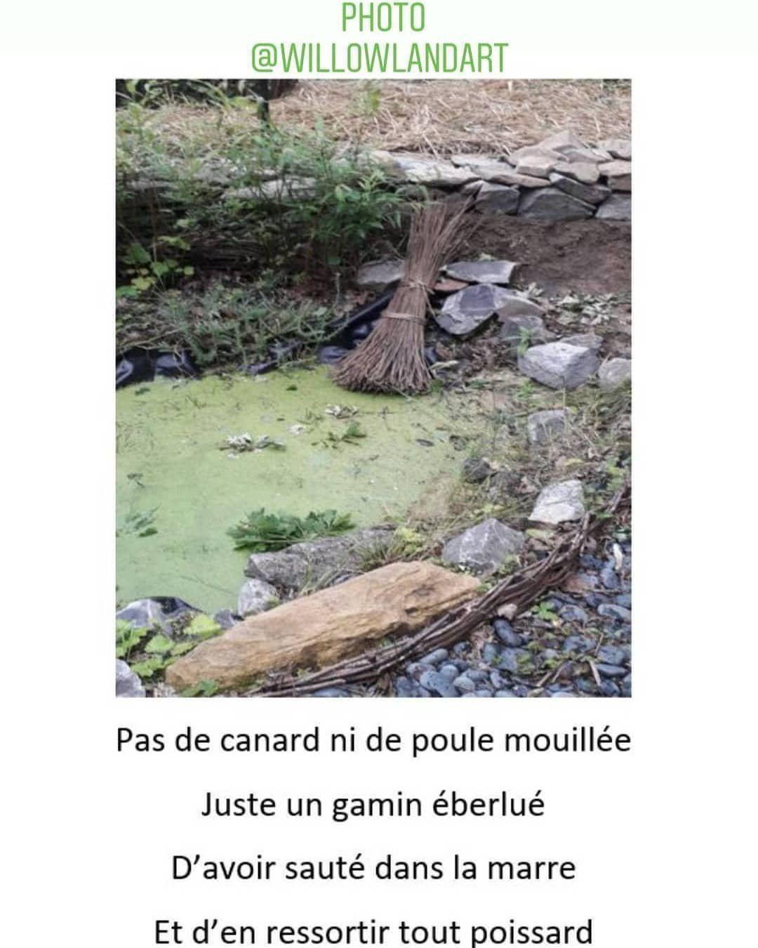 #poeme #prose #poésie #picturenature #photo #paysage #jardin #garden #voyage #pause #picture #decor #etang