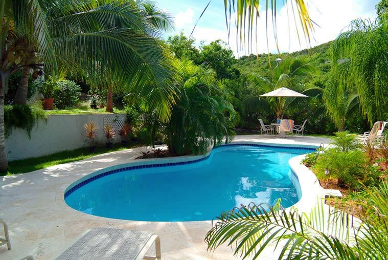 Tropical landscaping ideas around pool trees for Swimming pool surrounds design