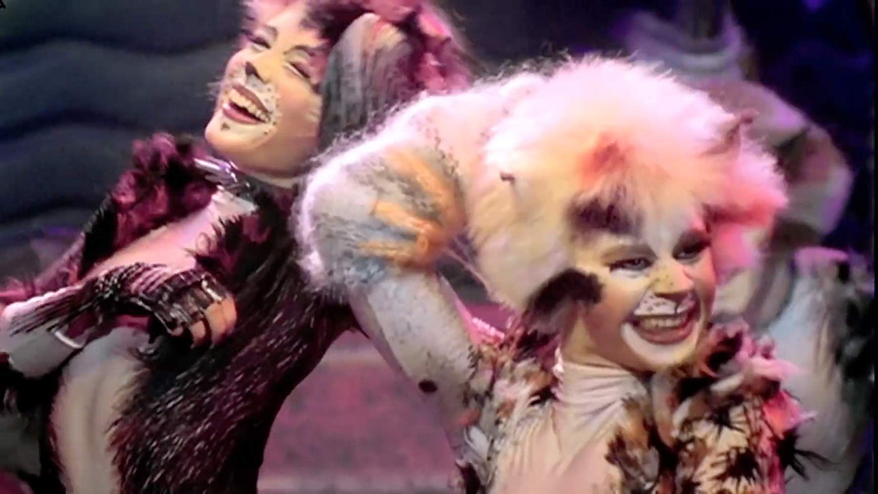 Cats (1998) in 2020 (With images) Cat movie, Jellicle