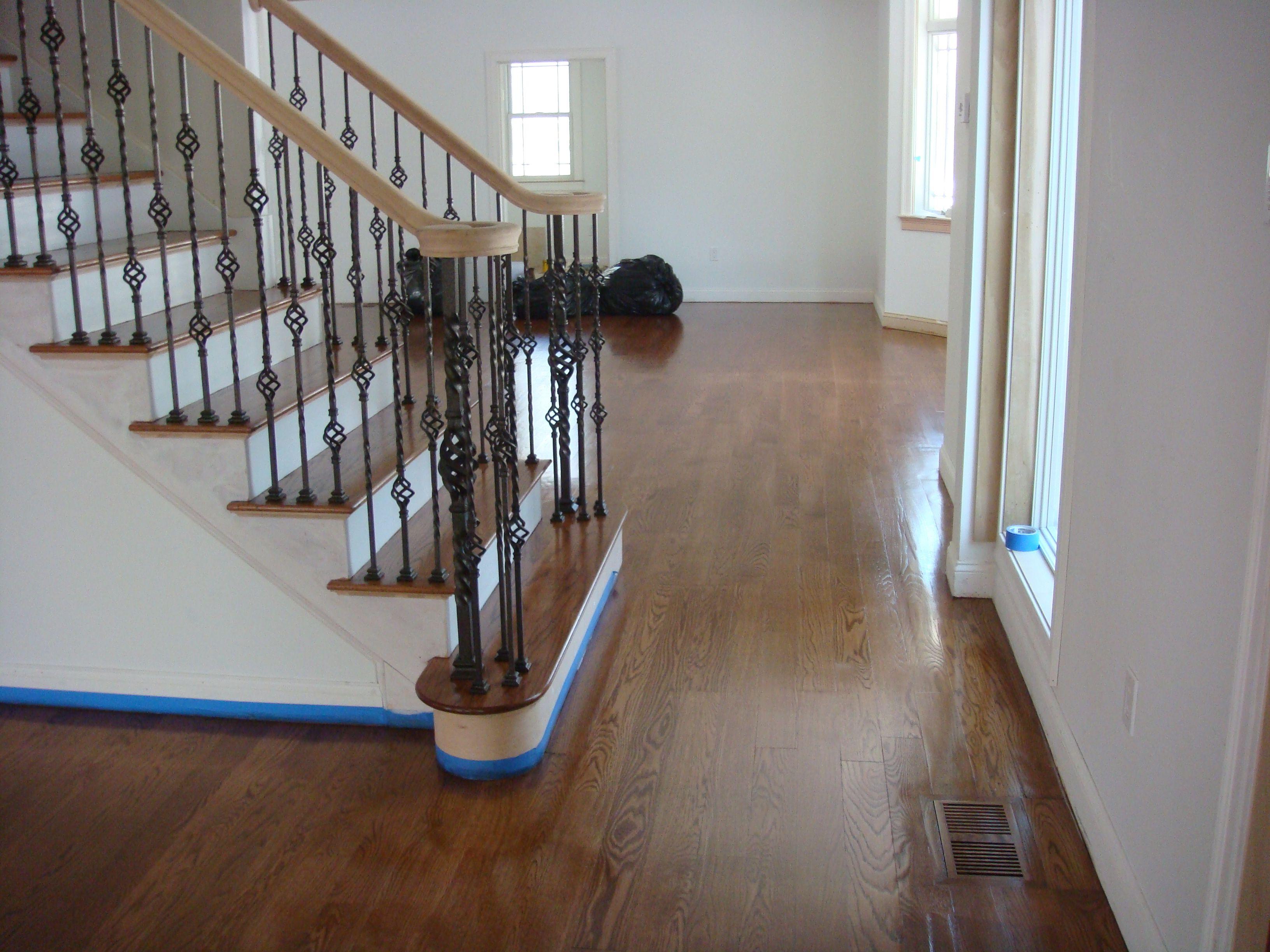 best hardwood floors for dogs - YouTube
