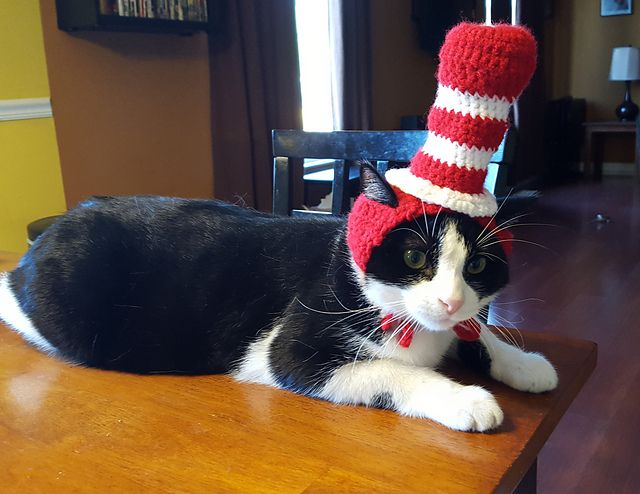 Ravelry: Cat In The Hat Cat Hat pattern by To Craft A Home
