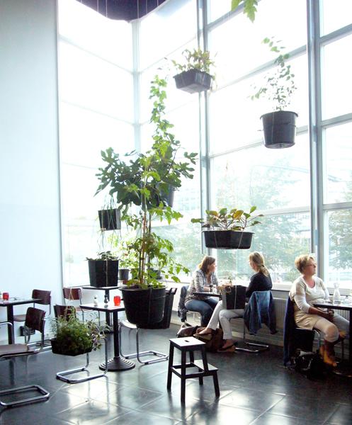 Oatmeal Studio . hanging garden