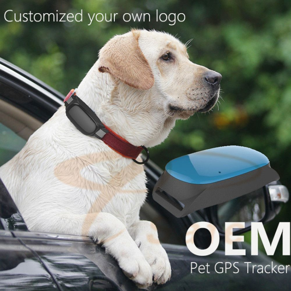 waterproof Smart Cats dogs GPS Tracking device Real Time