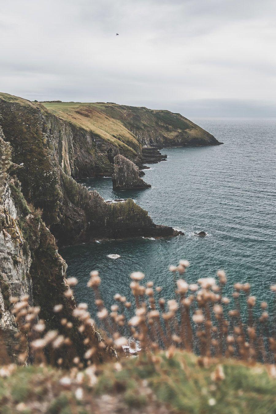 Que Faire En Irlande : faire, irlande, Faire, Comté, Irlande, Paysage,, Irlande,