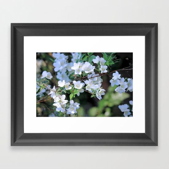 Choose from a variety of frame styles, colors and sizes to complement your favorite Society6 gallery, or fine art print - made ready to hang. Fine-crafted from solid woods, premium shatterproof acrylic protects the face of the art print, while an acid free dust cover on the back provides a custom finish. All framed art prints include wall hanging hardware. 20% Off + Free Shipping - Ends Tonight at Midnight PT! #Hawthorn