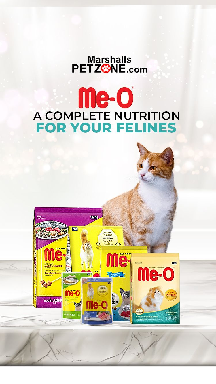 Meo A Complete Nutrition For Your Felines In 2020 Cat Food Best Cat Food Kitten Food