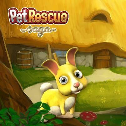 Petrescuebonus Com Pet Saga Free 10 Hammers