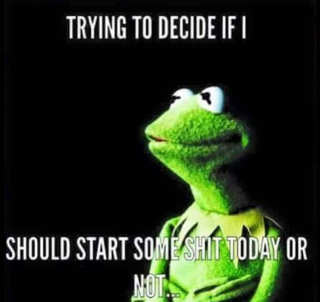 Pin On Kermit But That S None Of My Business