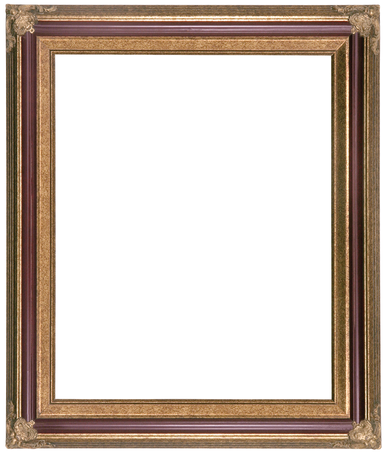 8647fd45a29 Burgundy   Gold Picture Frame Traditional Wall Home Decor Frame Frame 253  Burgundy   Gold
