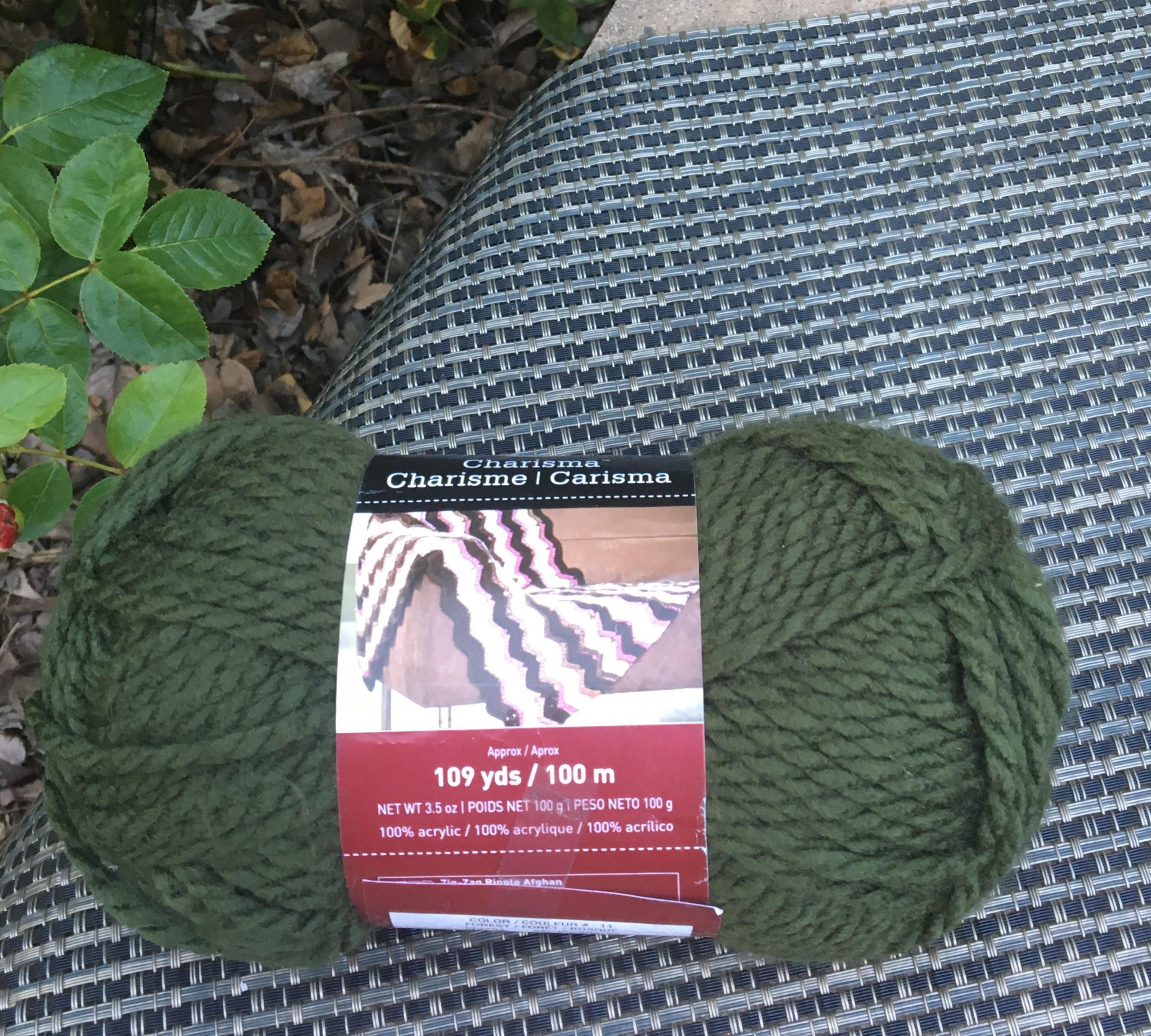 1 skein Loops & Threads Charisma Forest color / soft and chunky ...