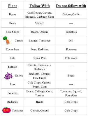 Vegetable plant families chart the rustic garden yeehaw let   do veggie two step also rh pinterest