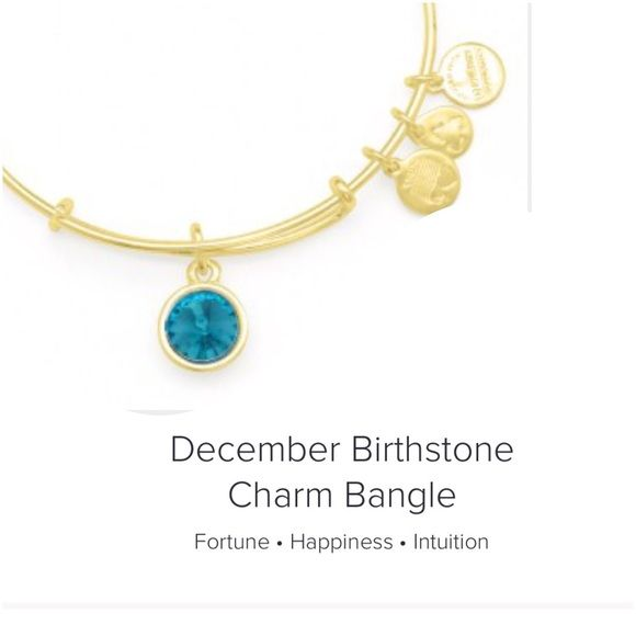 alex and ani, december birthstone bangle Add a pop of color to your wrist if you have a december birthday with this alex and ani bangle. good preowned condition, no trades Alex & Ani Jewelry Bracelets