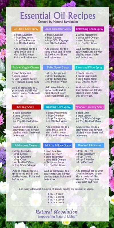Diffuser Love + Essential Oil Blends to Try! - Bus