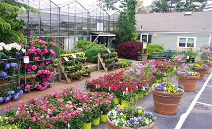 Mahoney S Garden Center Paul Mahoney Opened The First Mahoney S