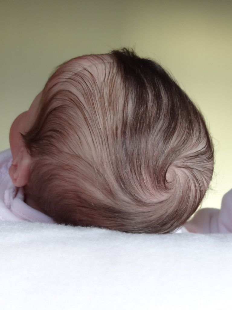 ~RoOtiNg PaTTeRn GuiDaNcE ChArT ~ REBORN DOLL SUPPLIES