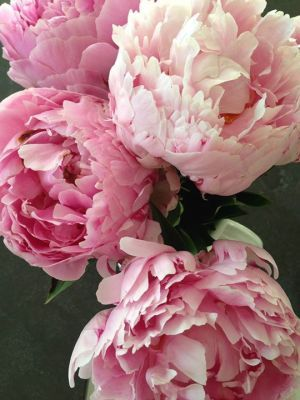 Photos of floral design - Floral creations - luscious.jpg