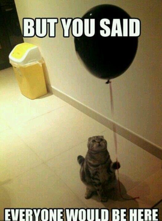 Aww ! Poor thing!
