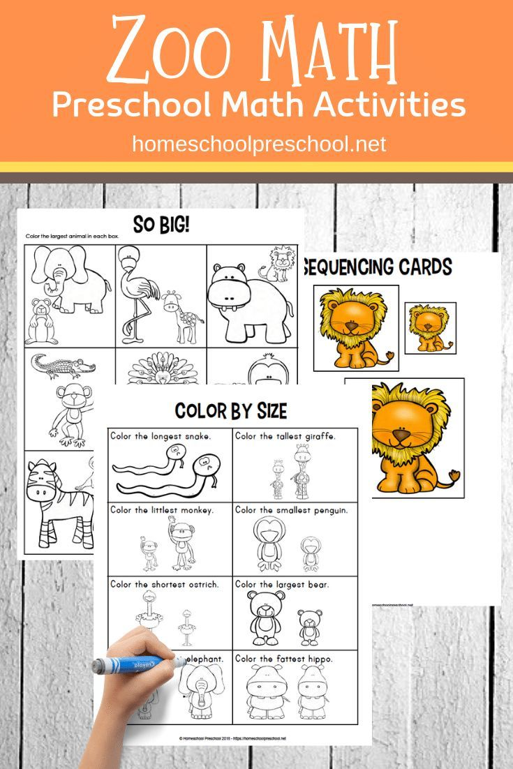 Free Printable Zoo Math Worksheets for Preschoolers (With ...