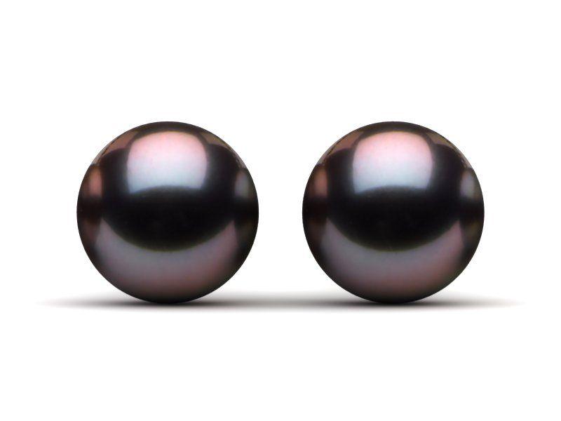10mm Tahitian Pearl Stud Earrings Aubergine Color Black Pearl Earrings Pearl Stud Earrings Earrings