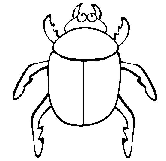 Big Beetle Coloring Pages Bug Coloring Pages Insect Coloring