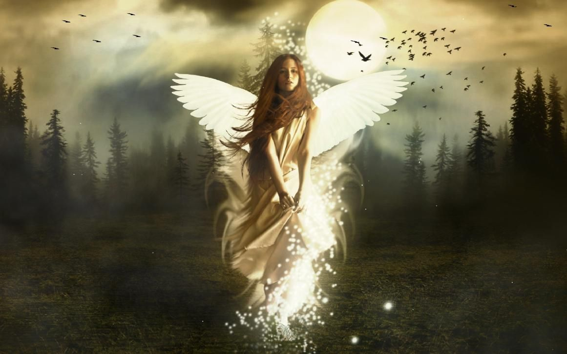 beautiful angel images  Yahoo Search Results  Angels