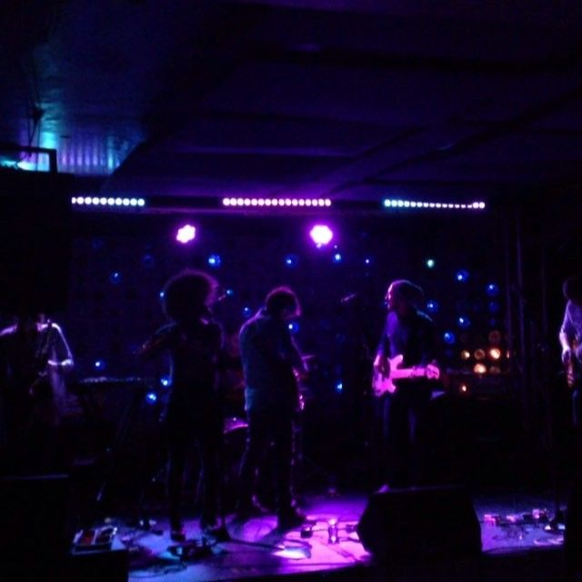 Dear Tracks, The City and Horses, Exiles & Gingerlys performed on Wednesday at Baby's All Right