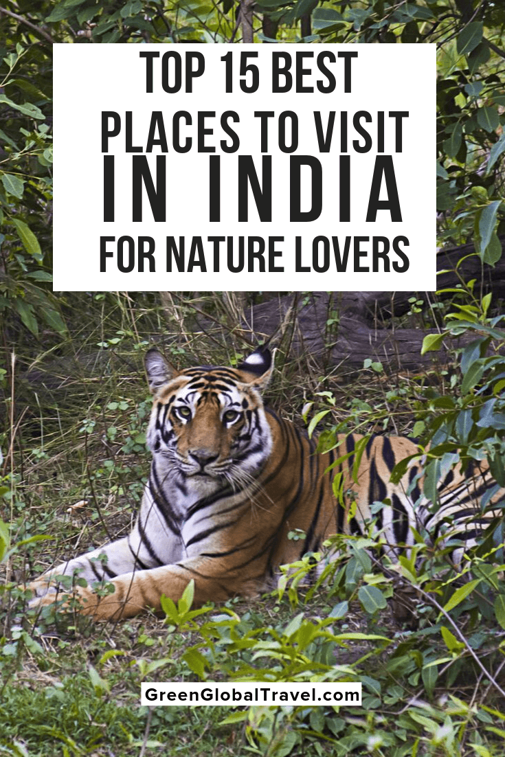 The 15 Best Places To Visit In India For Nature Lovers Cool Places To Visit India Tourist Travel Destinations Asia