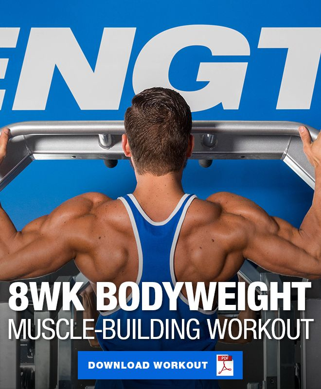 8 Week Muscle Building Bodyweight Workout