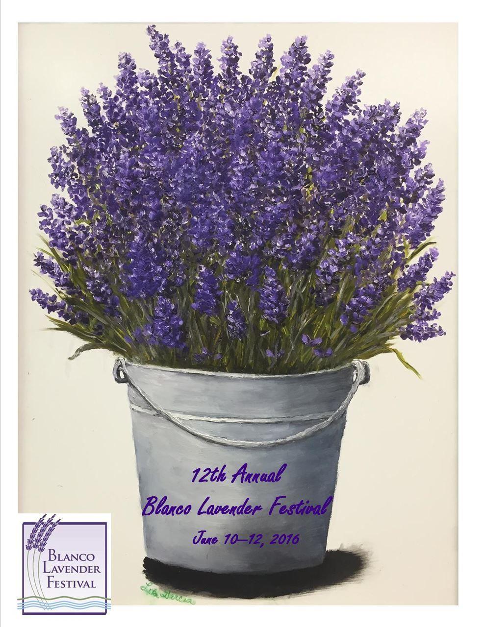 Blanco Chamber Of Commerce Lavender Fest Information Texas