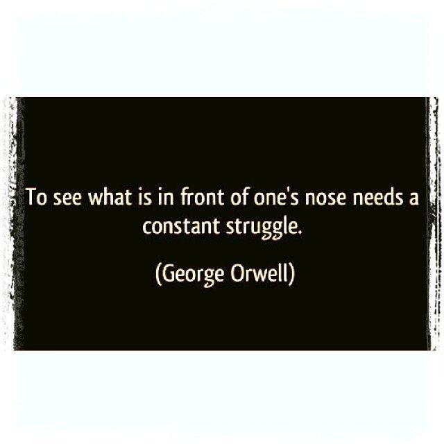 Animal Farm George Orwell Favorite Quotes Animal Farm George