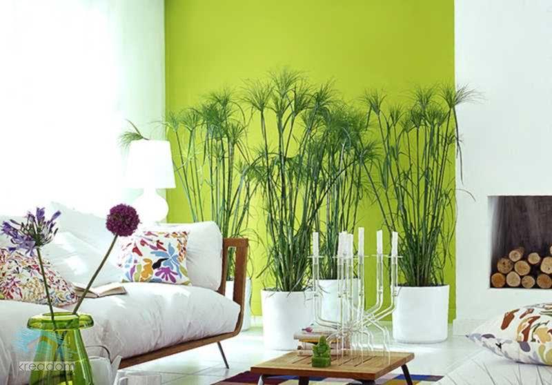 Naturaleza en dise o de interiores decoraci n ideas for Decoracion de interiores ideas originales