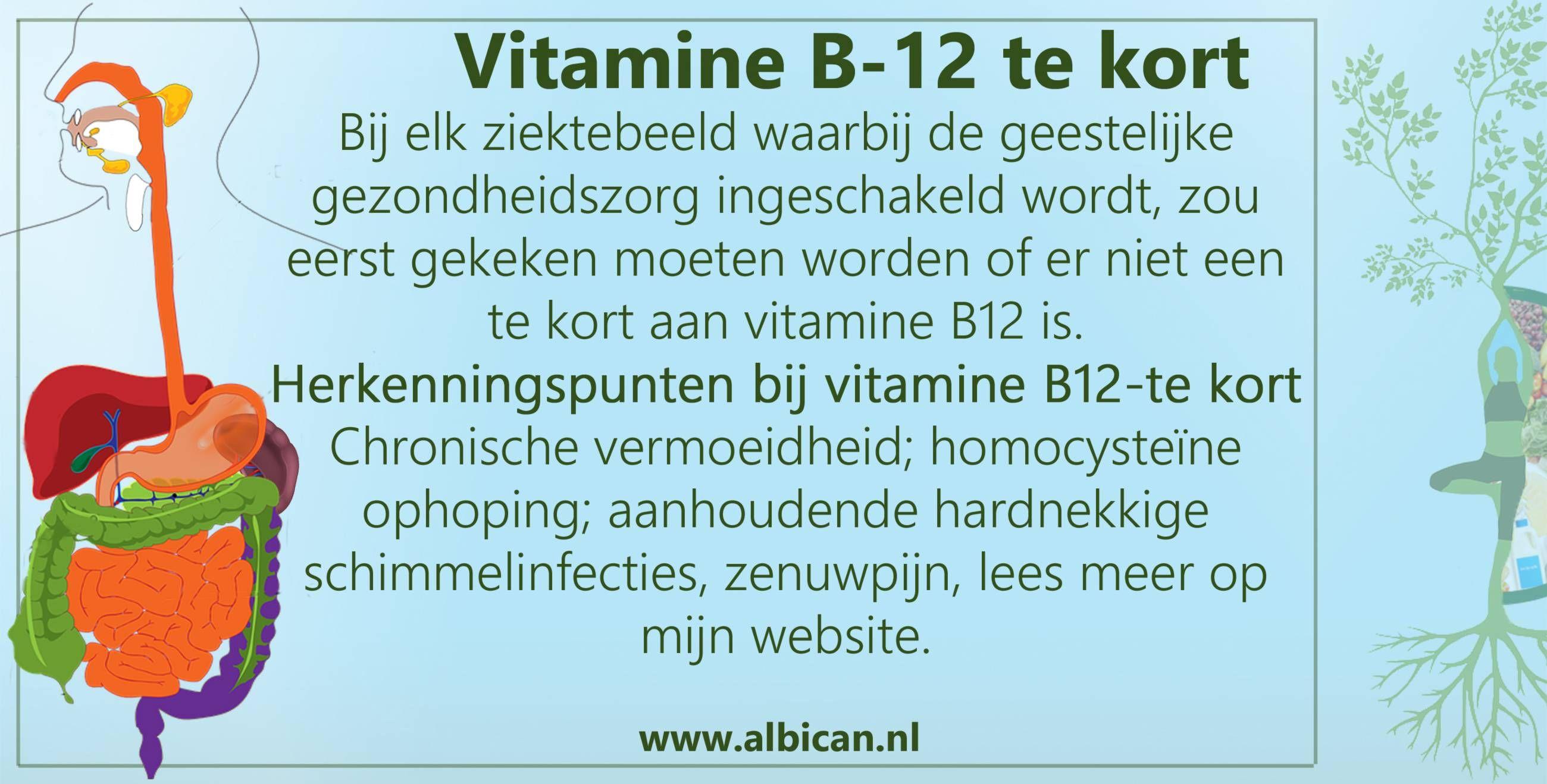 te kort aan vitamine b