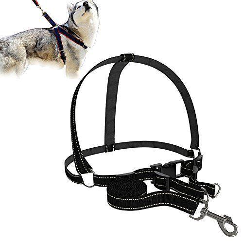 PetSafe Easy Walk Dog Harness (Front Clip) Easy walk dog