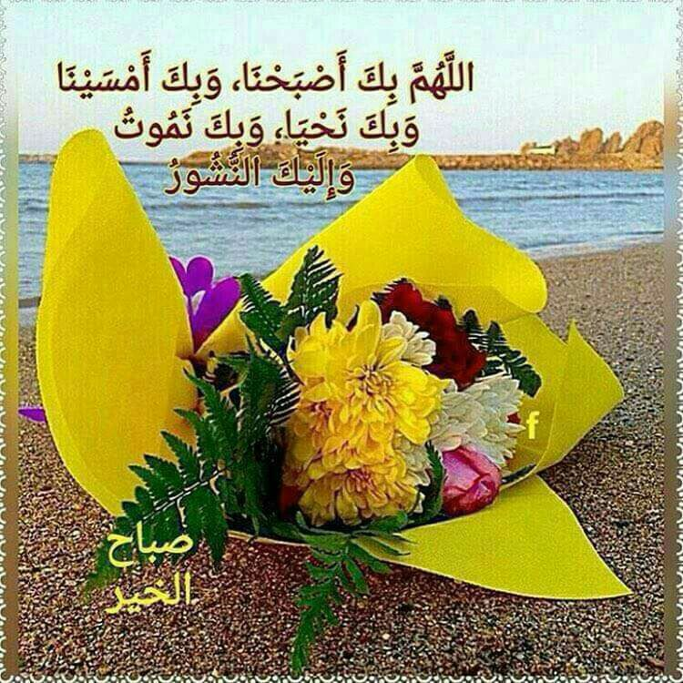 Pin By Hamid Boumediene On Buongiorno صباح الخير Beautiful Morning Messages Good Morning Picture Good Morning Animation
