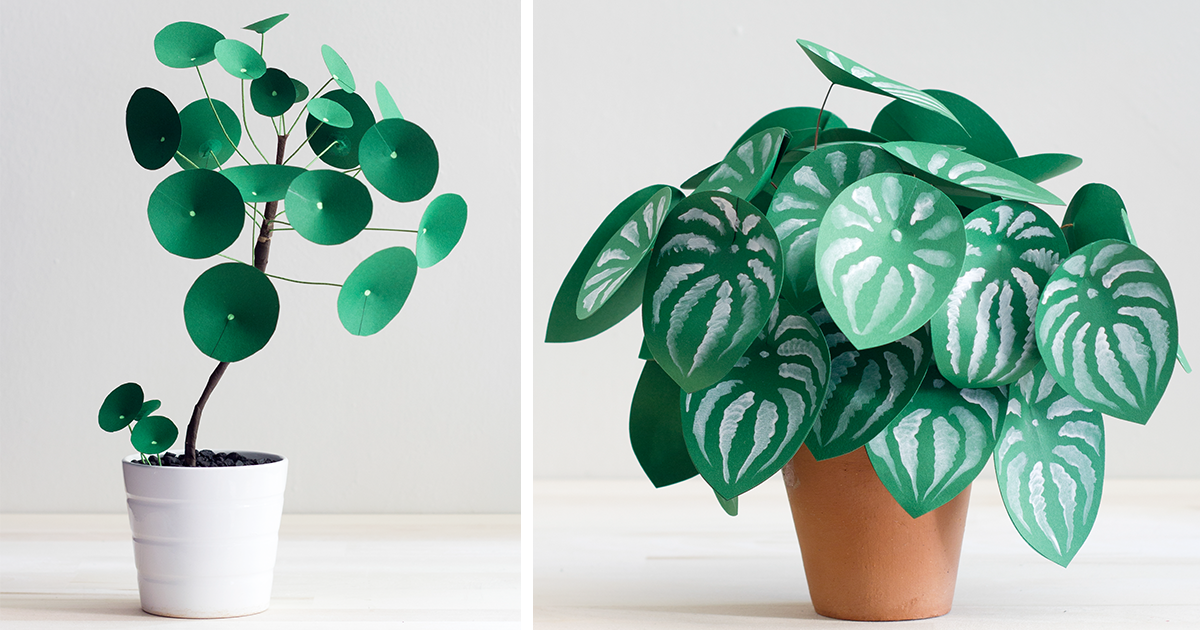 I Couldn't Grow Real Plants So I Made These Paper Ones | Bored Panda