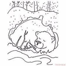Okul öncesi Kış Uykusuna Yatan Hayvanlar Etkinlikleri Ile Ilgili