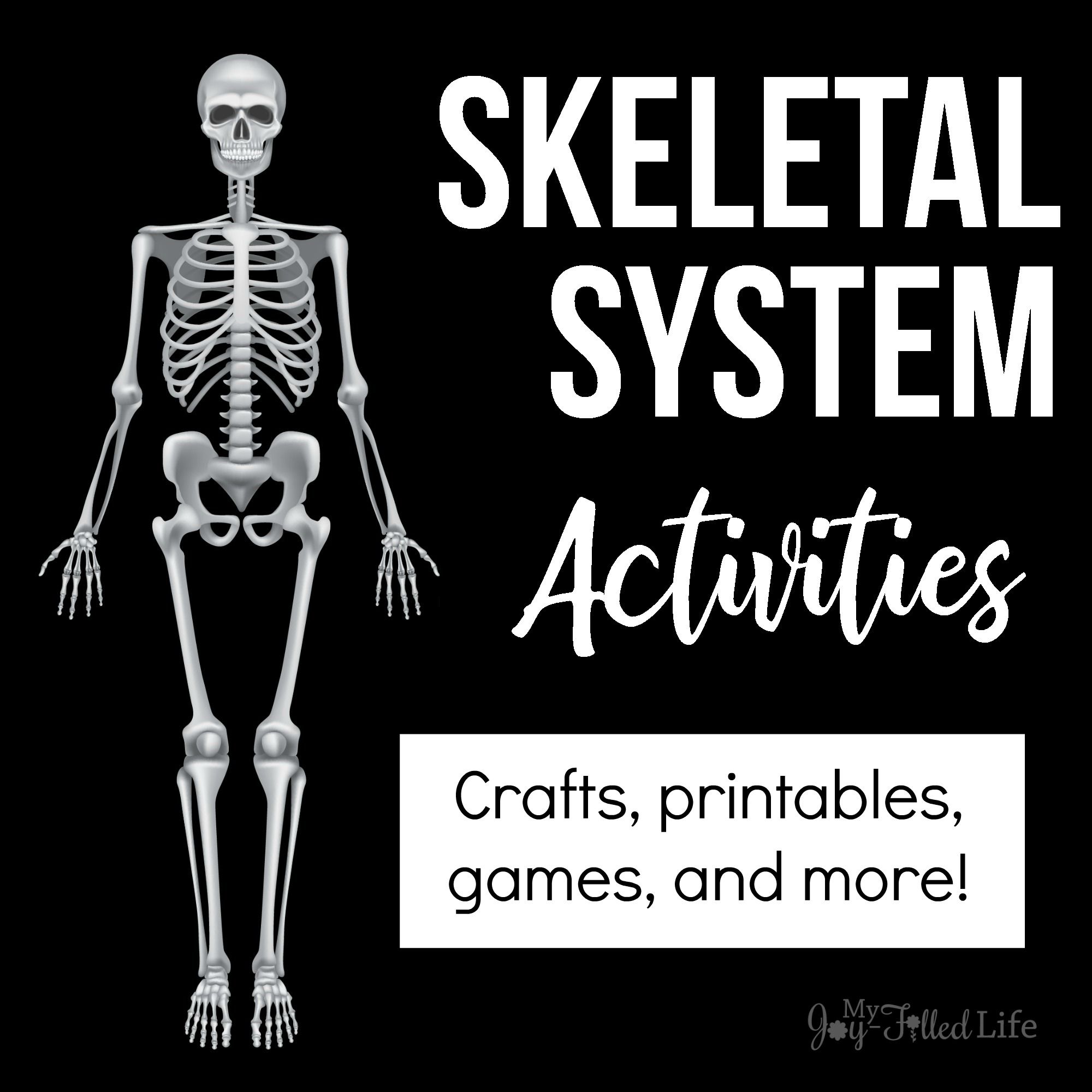 Activities For Learning About The Skeletal System With