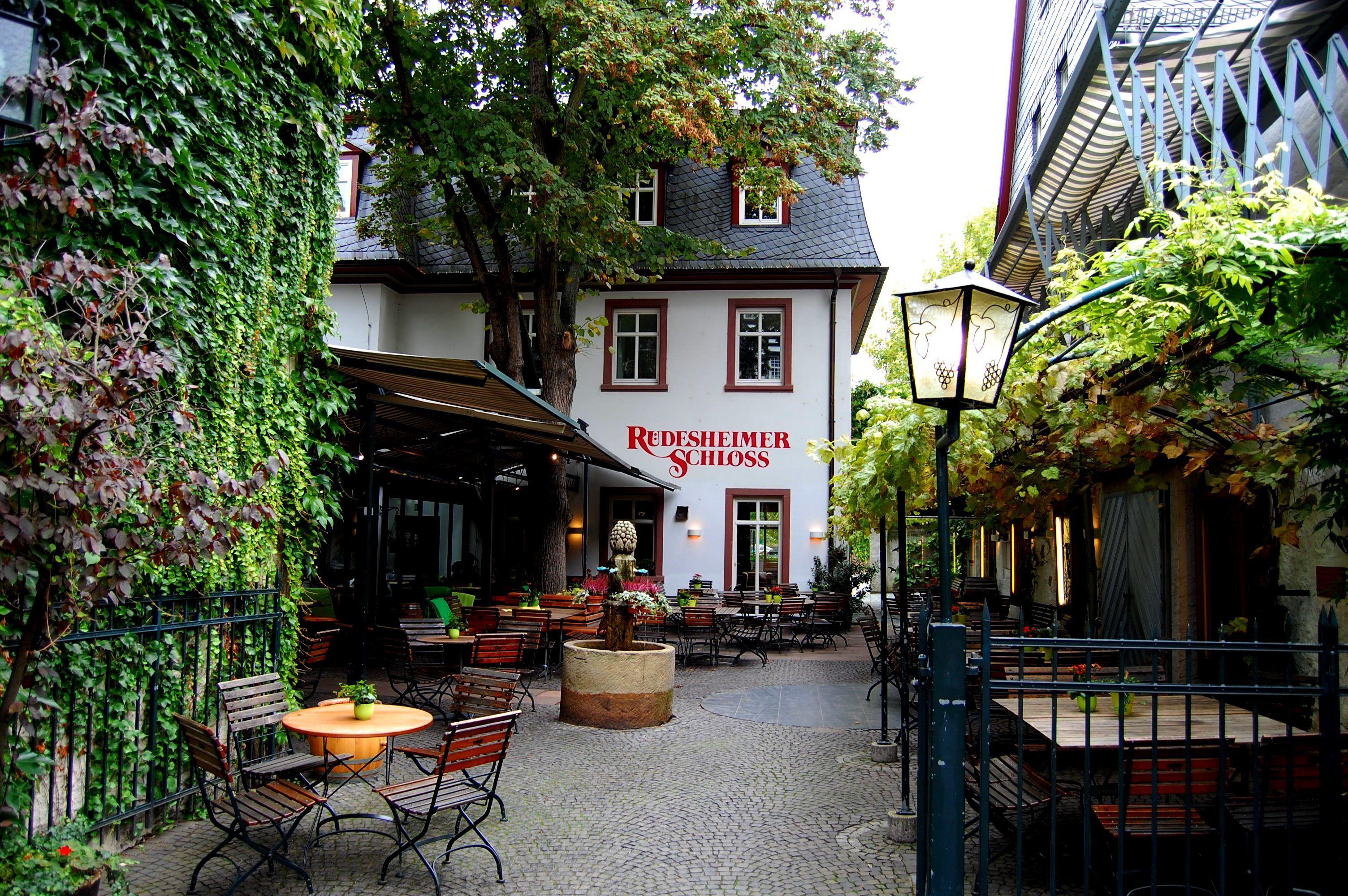 rudesheim germany germany i miss you pinterest regensburg travel memories and bavaria. Black Bedroom Furniture Sets. Home Design Ideas