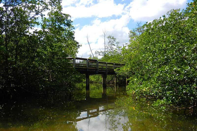 Kayak trail to a hidden beach: St. Lucie Inlet Preserve